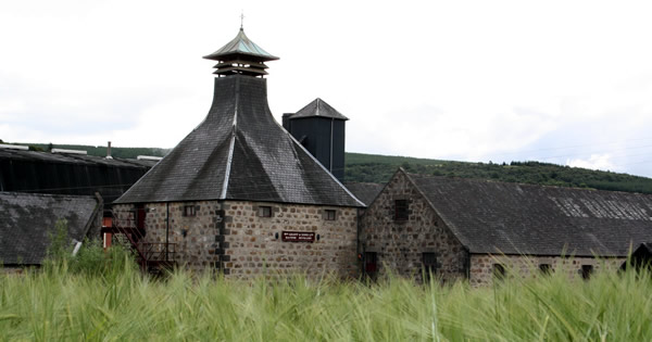 Balvenie Barley for Malt Whisky