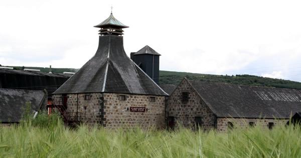 Balvenie Barley for Malt Whisky